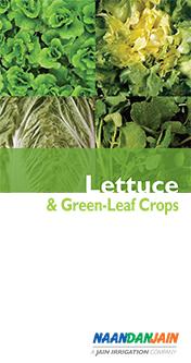 NDJ_Lettuce_booklet_eng_060314F_72-1