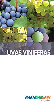 wine_grapes_span_021212_2-1