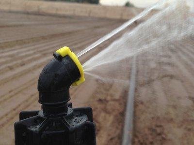 Super_10_for_germination_against_Nelson_Sprinkler_in_Baja,Mexico-1 (2)