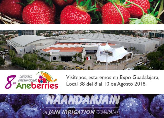 NaanDanJain_Aneberries_ Congreso_PORTADA