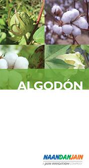 NDJ_Cotton_booklet_span_060314F_72-1